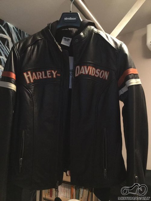 Harley Davidson   (L)