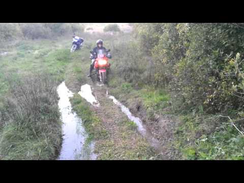 Triumph Tiger 955i off road