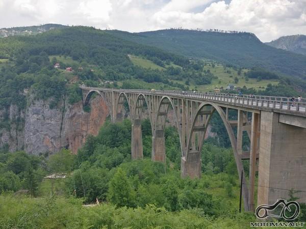 Taros tiltas