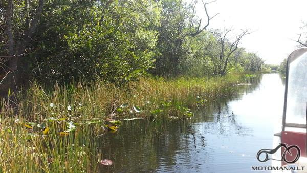 Vienas iš daugelio vandens kanalų