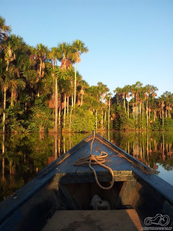 Puerto Maldonado, Amazon, Peru