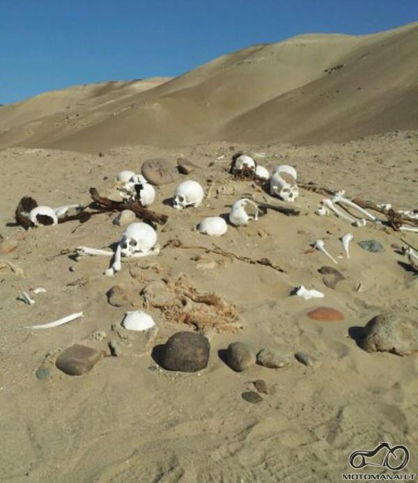 Chauchilla cemetery,Nazca,Peru