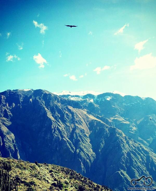 kondoru skrydis/Cruz del Condor