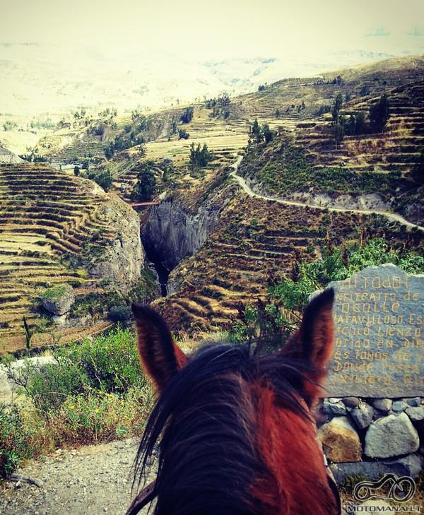 tikras zirgas kalnuose patikimesnis:)