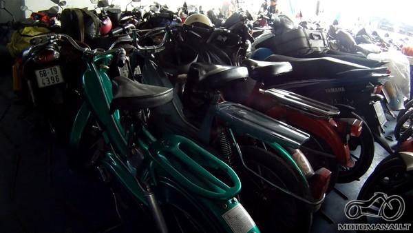 Daugybe dviraciu transporto piremoniu
