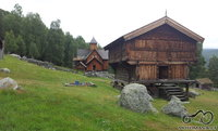 Norvegiška senovinė trioba