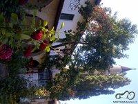 Chanų miestas Kryme. Rožė - amžingo gyvenimo simbolis, minaretas - sąsaja su dangumi.