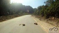 Tokie jau tie Vietnamo keliai, kad ir kaip gražu būtų aplinkui vistiek turi įdėmiai stebėti kelią, kitaip kelionė gali blogai baigtis :)