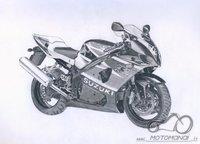 GSX-R1000 piesinukas:)