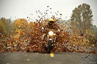 ruduo...krenta lapai auksiniai