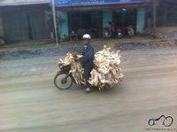 Čia ne aš :) bet tie kurie galvoja kad su motociklu negalima pasiimti daug bagažo - gali galvoti iš naujo :)