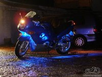 Suzi blue led lights
