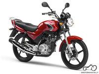 125cc - 2008/kas geriau ?