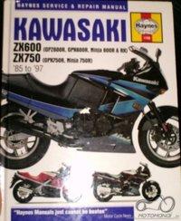 Reikia Kawasaki EL 252 manualo?