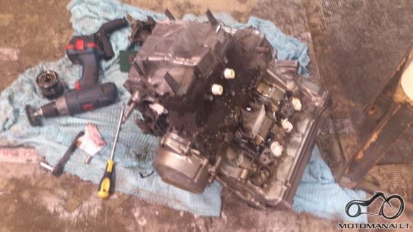 Honda Hornet variklis karteriu į viršų