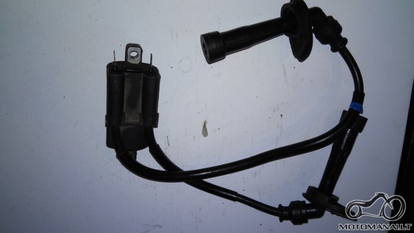 Bandit 600 S ignition coil