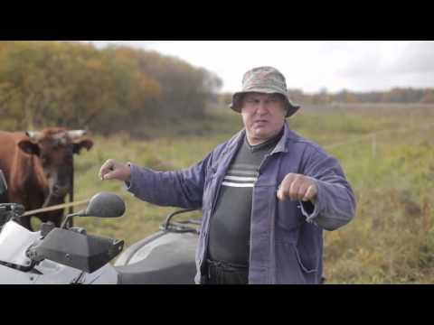 Atsiliepimai apie CFMOTO Ūkininkas