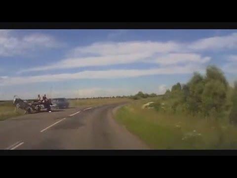 Horse vs car Конь против тачки
