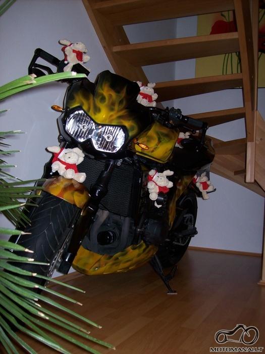 Kur propoguojantys motociklus žmonės laiko juos žiemą?