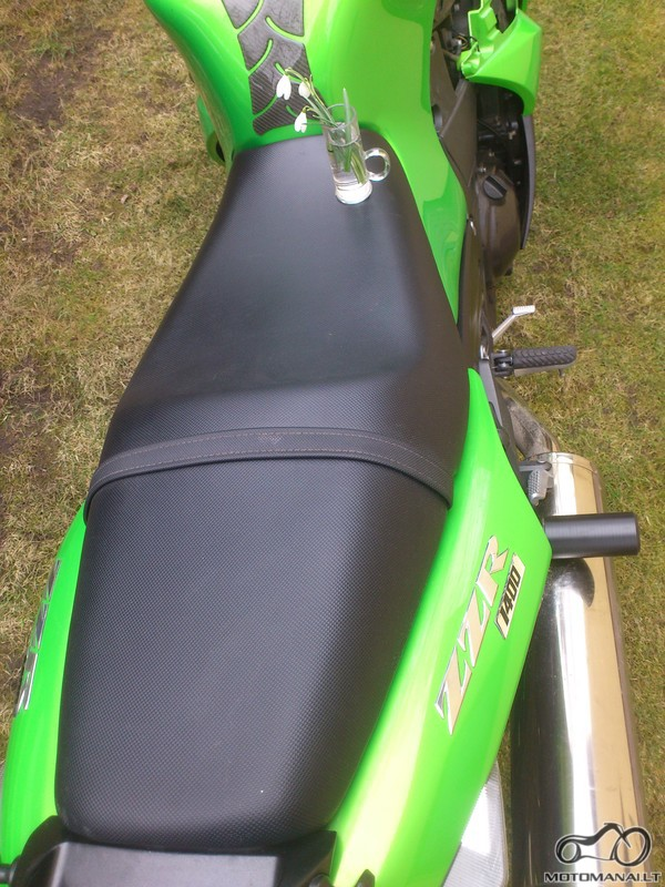 Motociklas ant pievos. Ant sedynes bent viena gyva gelyte (gali buti pavasarine zibute ar pan.)