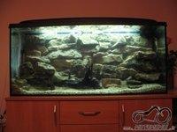 Akvariumas namie - ramybės įsikūnijimas...