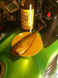 motociklas, alaus butelis ir rukyta zuvis