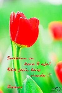Sveikinu su kovo 8-ąja ;)