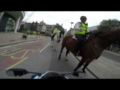 Suzuki GSXR wheelie and busted by police on a horse in Central London